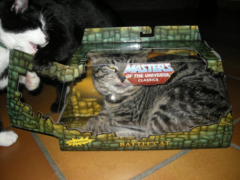 Battle Cat - topic officiel - Page 6 Dscn9712