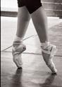 Cou de pied et ligne de jambe - danse classique Eleono10