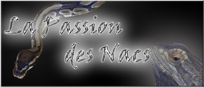 la passion des nacs