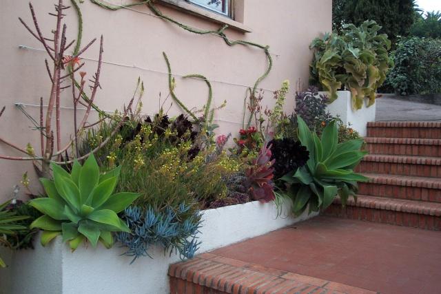 Envie d'un petit coin de jardin exotique Chez_j11