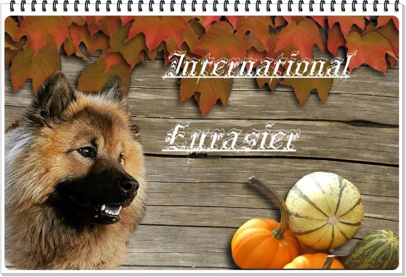 Forum International Eurasier
