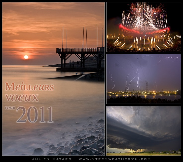 Bonne année 2011 Voeux210