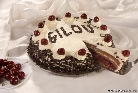 Joyeux anniversaire Gilou!! Annifg11