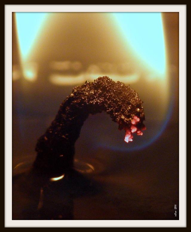 Concours du mois de janvier 2011. Thème : La lueur d'une flamme Flamme10