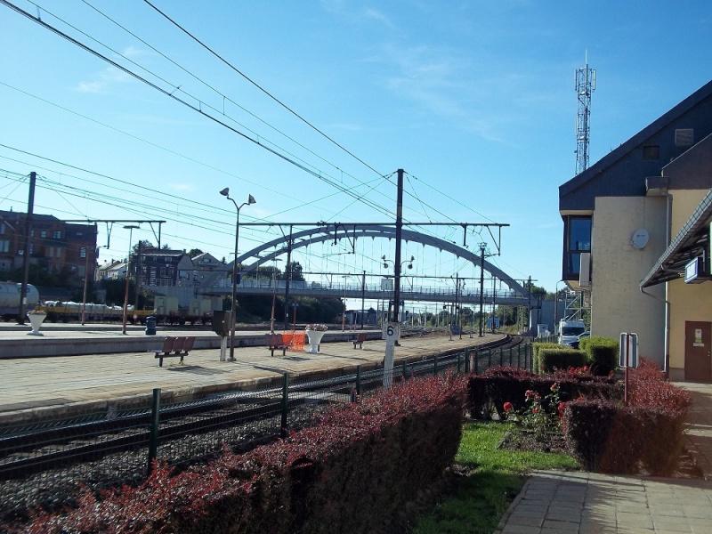 Photos de la gare de Libramont - SNCB - 2012 // Bahnhof Libramont // 100_3530