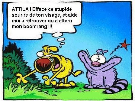 Humour en image - Page 3 Boomer10