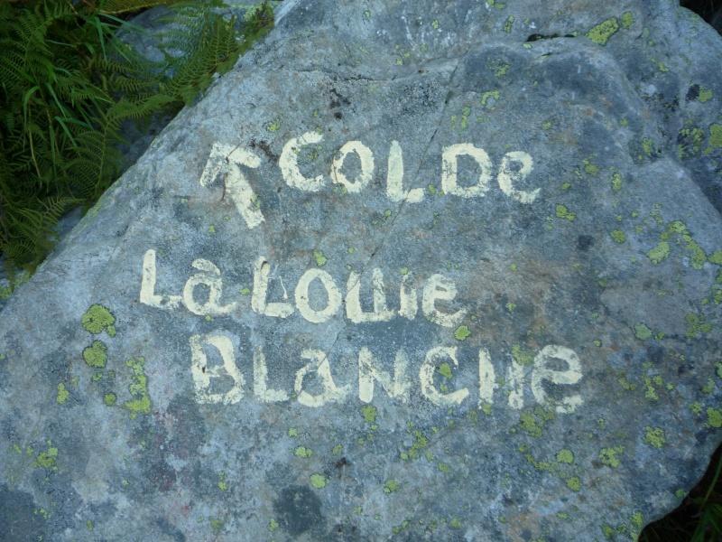 Le col du Tachuy (Sainte-Foy) P1010710