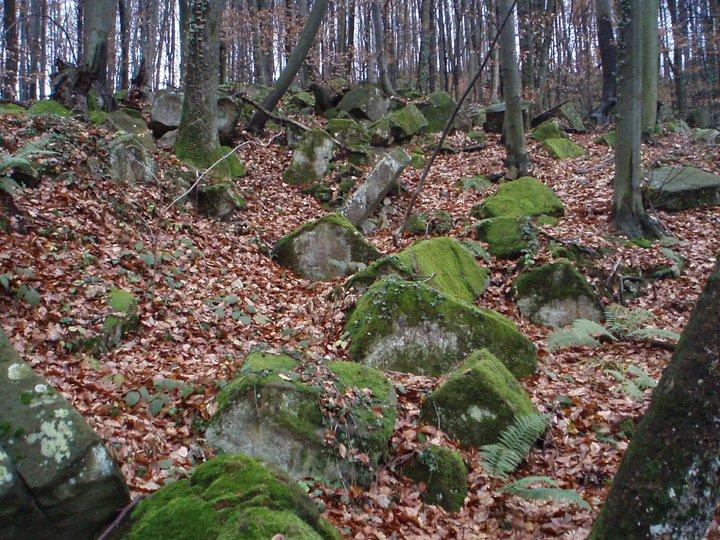 Kiklopske zidine u Štrepcima 67571_10