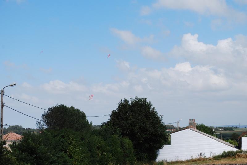 2012: le 23/08 à 14H52 - Un phénomène insolite - Saint-Martin-Boulogne (62)  - Page 3 Dsc_0232