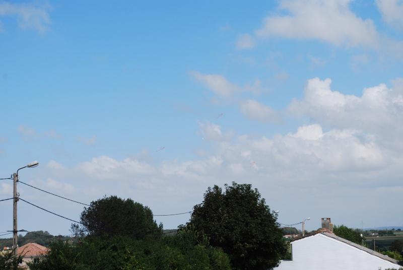 2012: le 23/08 à 14H52 - Un phénomène insolite - Saint-Martin-Boulogne (62)  - Page 3 Dsc_0233