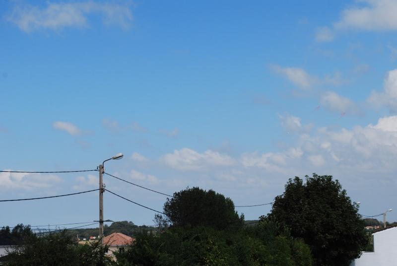 2012: le 23/08 à 14H52 - Un phénomène insolite - Saint-Martin-Boulogne (62)  - Page 3 Dsc_0234