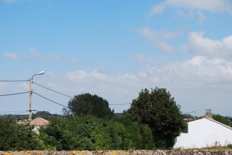2012: le 23/08 à 14H52 - Un phénomène insolite - Saint-Martin-Boulogne (62)  - Page 3 Dsc_0235