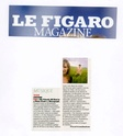 "Actualité de ""My friends all died in a plane crash"". Figaro11"