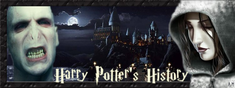 Harry potter's history