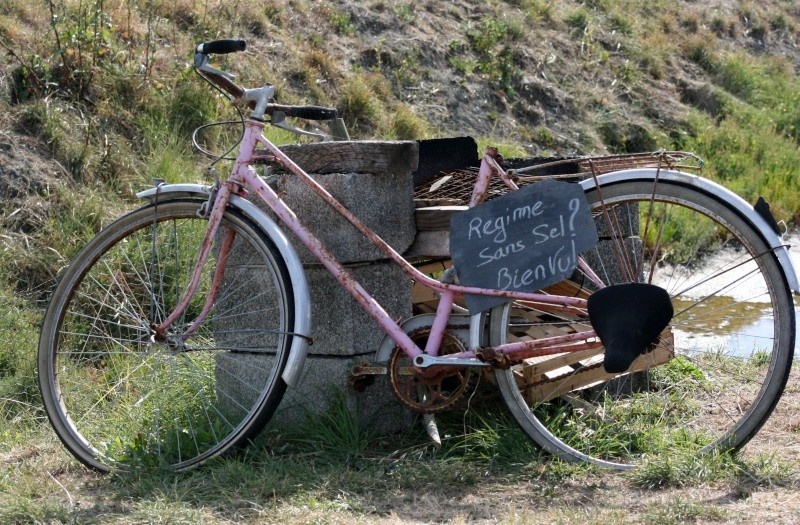 A bicyclette Img_7911