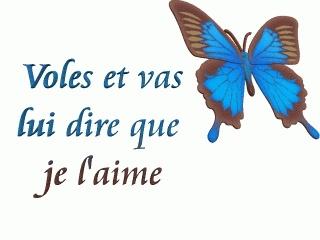 douce pensee pour toi petit papillon - Page 2 94084410