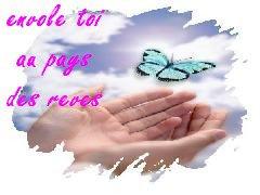 douce pensee pour toi petit papillon Papill11