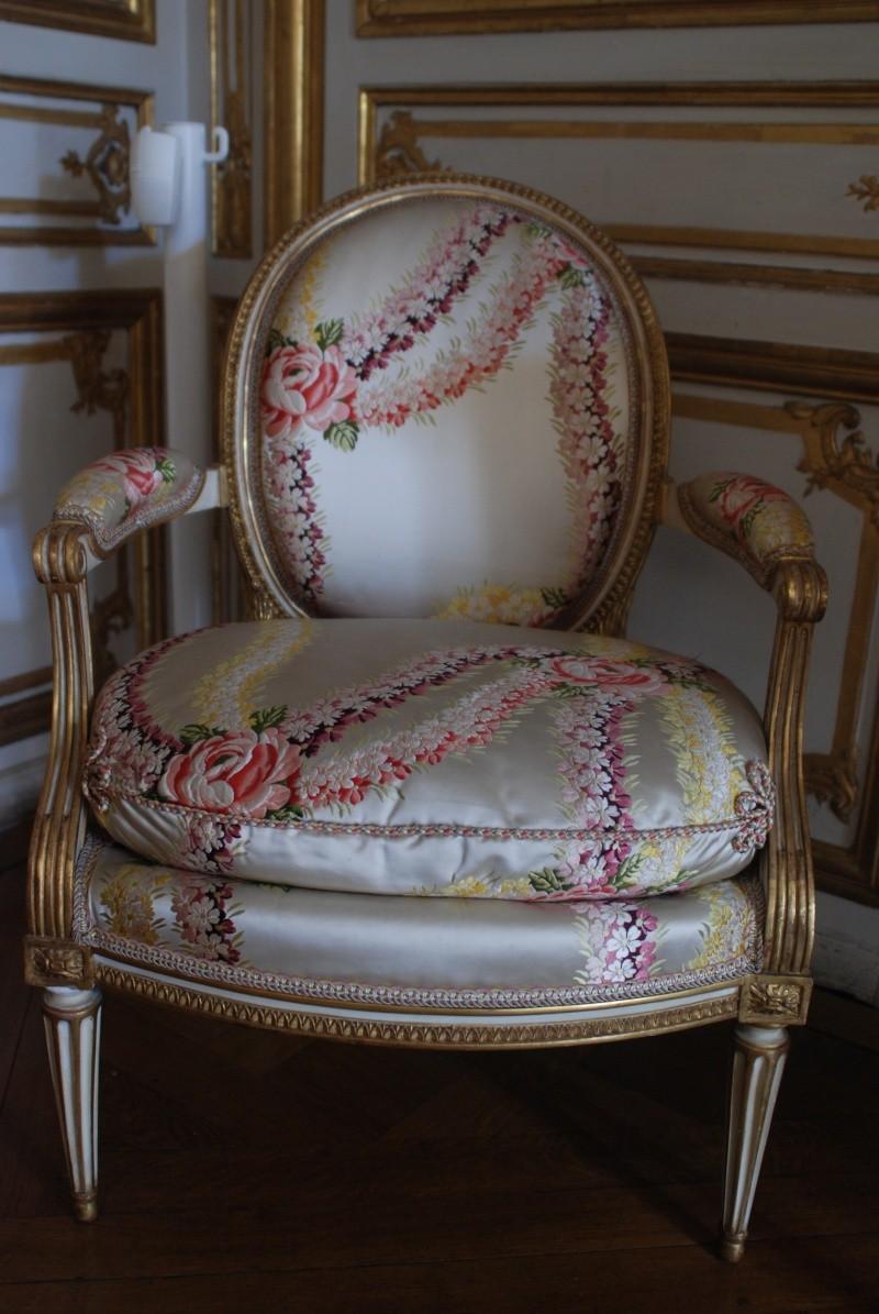L'appartement de Mme du Barry à Versailles - Page 3 Dsc_6010