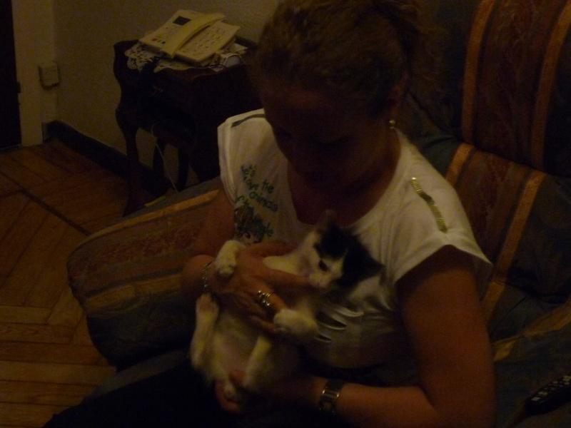 Bolita, señor gato - Página 5 P1010718