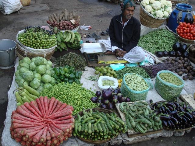 Ci torno!!! India 2011 India_32