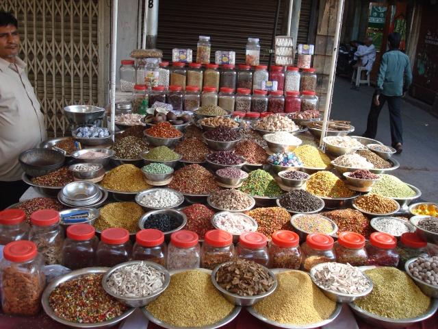 Ci torno!!! India 2011 India_53