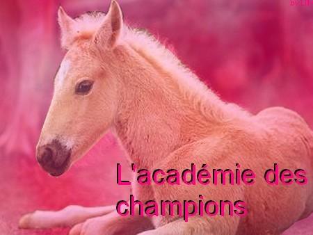 L'académie des champions