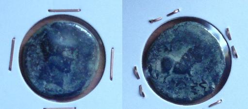 Semis de Castulo (imitación del FAB729) Dsc00410