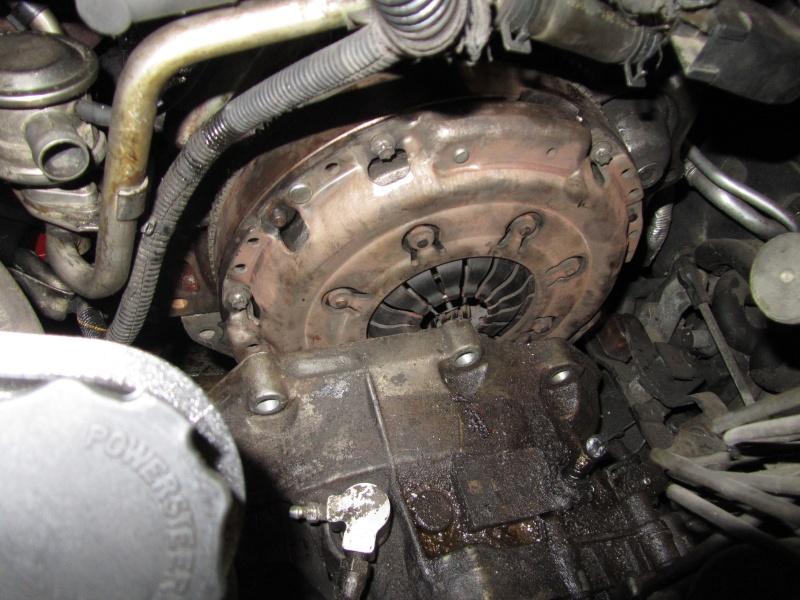 Paintermans Vecci V6 wird zum Vecci MV6 - Updat Leistungsprüfstand Img_0727