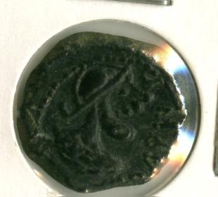 Semis de Iliberri [WM n° 8741] Image114