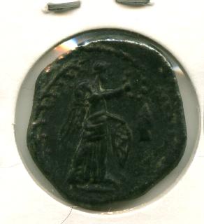 Semis de Iliberri [WM n° 8741] Image115