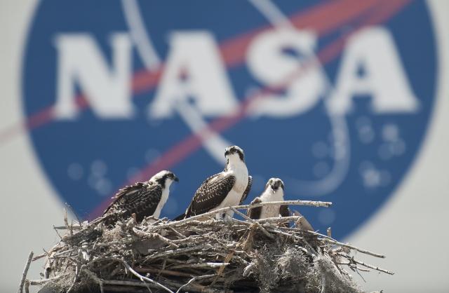[STS-132] Atlantis : fil dédié au lancement. (14/05/2010 à 20h19) - Page 16 Sts-1310