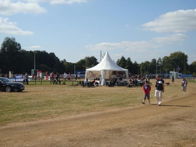 Appel aux bénévoles - Fête du Cheval 2012 - Page 8 Dsc02811