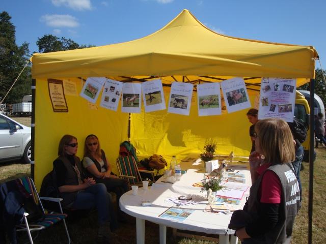 Appel aux bénévoles - Fête du Cheval 2012 - Page 8 Dsc02820