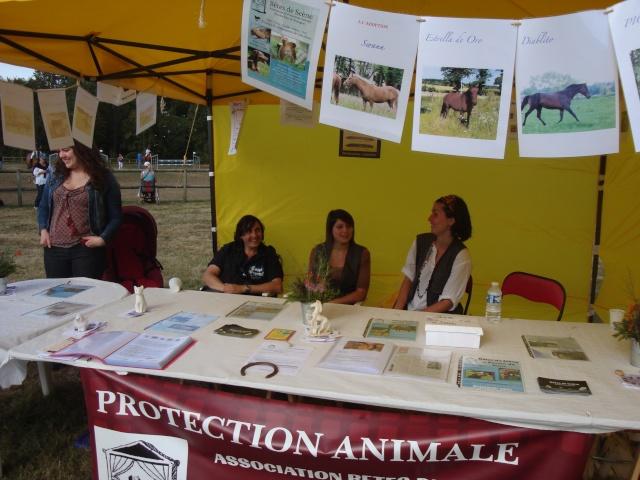 Appel aux bénévoles - Fête du Cheval 2012 - Page 8 Dsc02839