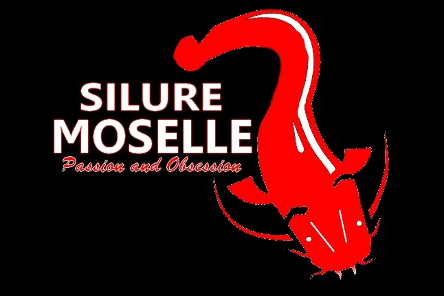 Silure-Moselle