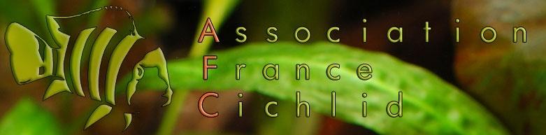 CONGRES DU 30ème ANNIVERSAIRE DE L'AFC Captur10