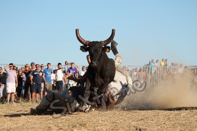 CANAULES 2012 Rool_110