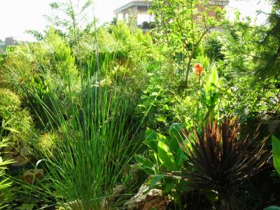 Nuestro jardín de Sa Possessió Lago_410