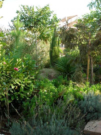 Nuestro jardín de Sa Possessió Morera10