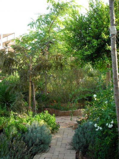 Nuestro jardín de Sa Possessió Tipuan10