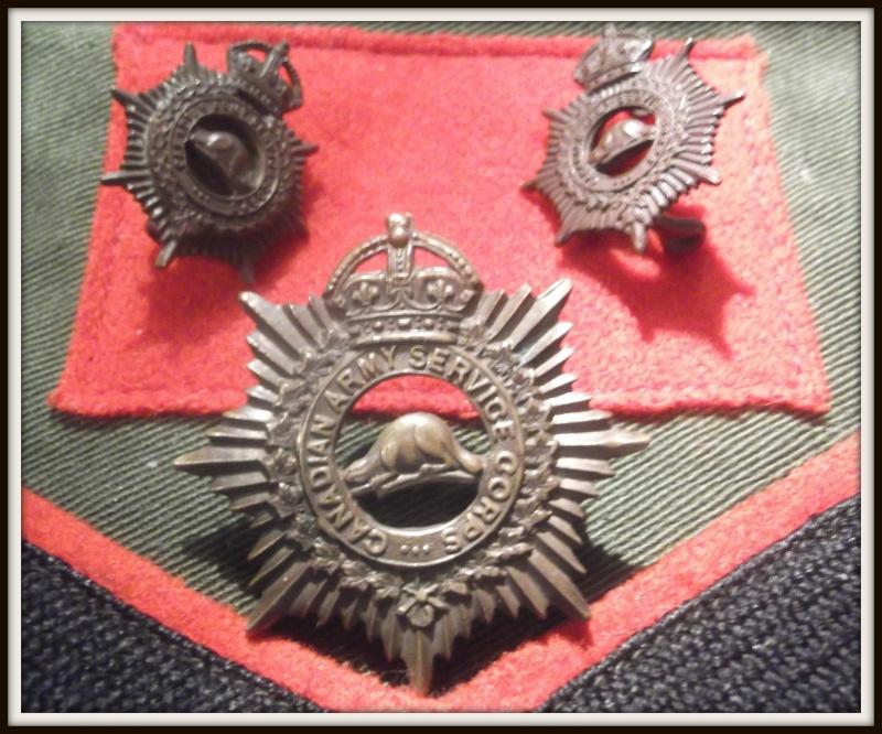 cap badge et collard du C.A.S.C. Dscf5614