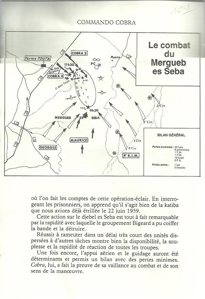Bataille de Saida - Page 2 Algeri40