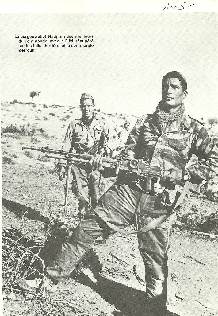 Bataille de Saida - Page 2 Algeri41