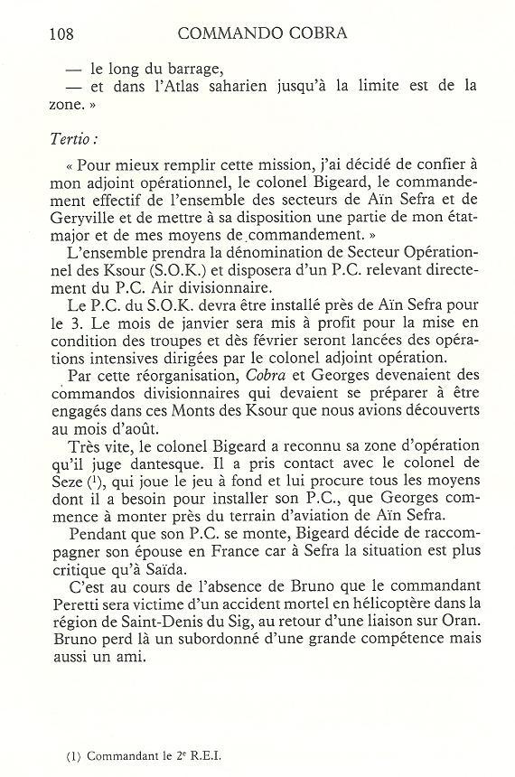Bataille de Saida - Page 2 Algeri44