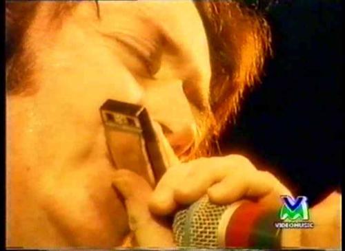 Photo de Silviano Martini - Pistoia Blues Festival, Italie, 2 juillet 1994 Image_38