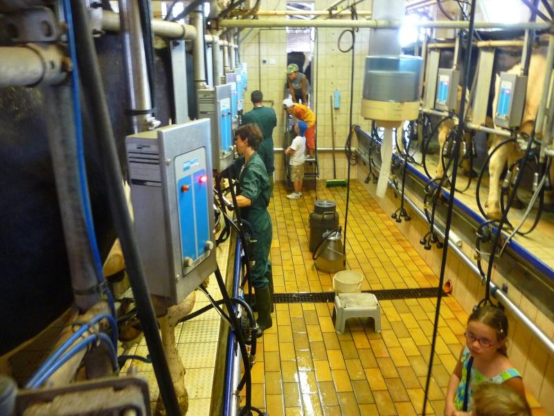 ferme - GAEC de la Mossig-Ferme Ostermann-Schneider à Wangen P1010517