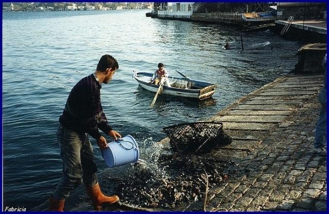 Bateaux sur l'eau - Page 2 Istanb10