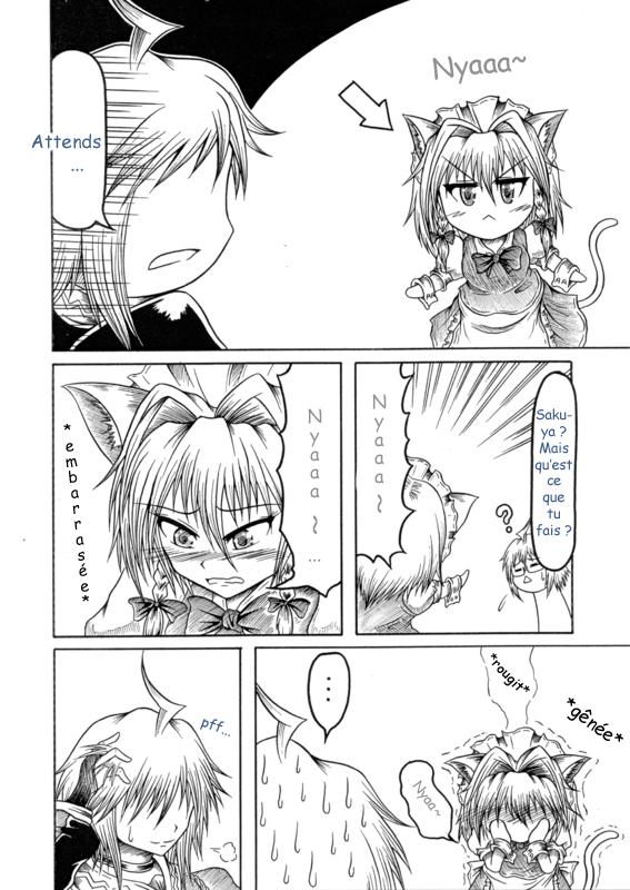 [Trad. par Lisianthus & HairMythe] Touhou Kourinden (Hidefu Kitayan) - Page 2 4110