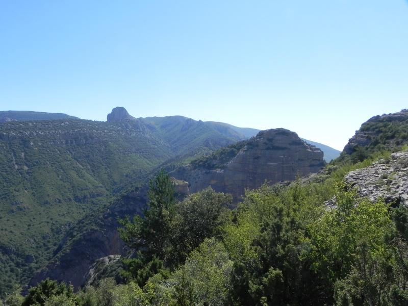 Vancances Juillet 2012 dans les Pyrénées Espagnoles Dscn5328