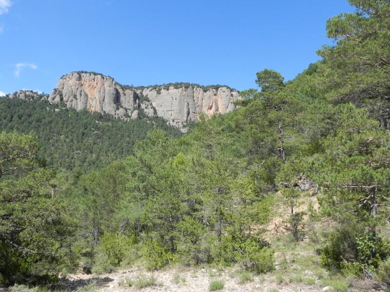 Vancances Juillet 2012 dans les Pyrénées Espagnoles Dscn5416